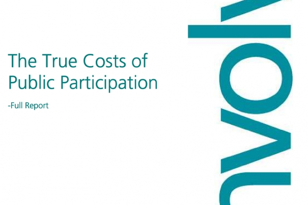 The True Costs of Public Participation